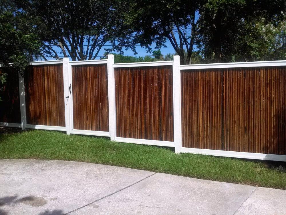 Landscaping Tampa Bay Bamboo